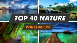 wallpaper engine nature top 40