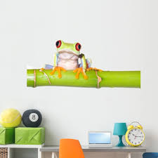 Amazon Com Wallmonkeys Red Eyed Tree Frog Wall Decal Peel And Stick Animal Graphics 60 In W X 40 In H Wm329618 Home Kitchen