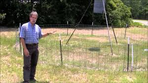Exclusion Fencing For Feral Hogs Around Wildlife Feeders Youtube