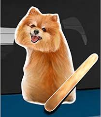 Amazon Com Wagging Wipers Pomeranian Dog Car Rear Wiper Sticker Decal Automotive