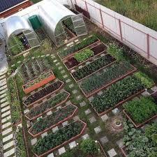 starting a garden bed from scratch