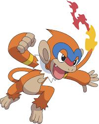 Monferno   Pokémon Wiki   FANDOM powered by Wikia