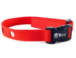 Extreme Dog Fence Dog Collar Replacement Strap Compatible With Nearly All Brands And Models Of Underground Dog Fences Walmart Com Walmart Com