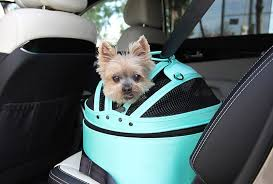 the best dog crates for the car could