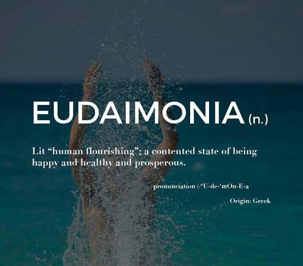 Image result for eudaimonia