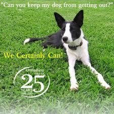 Hidden Fence Melbourne Dog Trainer Mill Park Victoria Australia 11 Reviews 694 Photos Facebook