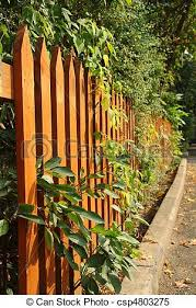 Wooden Fence Orange Wooden Fence With Green Leaves And Twigs