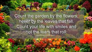 inspirational quote count the garden by the flowers never by the