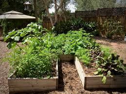 southern california edible garden
