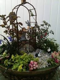 growing a miniature garden in the home