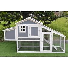 Coop King Modern Polycarbonate Chicken Coop With Attached Run And Metal Pull Out Tray 617713 At Tractor Supply Co