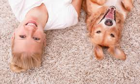 lady and dog on clean carpet spifco