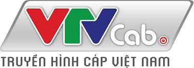Lắp đặt truyền hình việt nam: Truyền hình cáp việt nam
