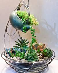 This is a perfect succulent garden masterpiece made from simple kitchen  household products (Inspo: Sher… | Succulent garden design, Succulents diy,  Garden terrarium