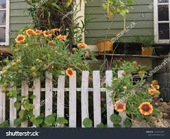 Small Wooden Fence Little Garden Stock Photo Edit Now 1274212207