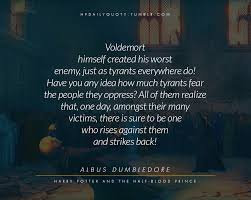 daily quotes from harry potter s world