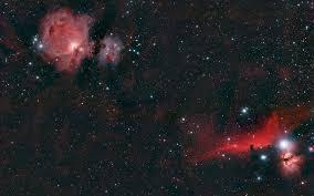 orion e stars red black nasa nebula