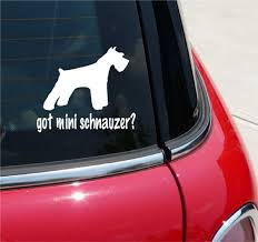 Got Miniature Schnauzer Dog Graphic Decal Sticker Vinyl Car Wall