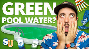 get rid of pool algae green water