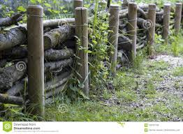 Wooden Fence With Thick Wattled Branches Stock Image Image Of Trunks Rural 109197133