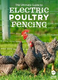 Portable Electric Poultry Fencing Provides Flexible And Easy To Set Up Chicken Coop Predator Prevention And Other Chicken Coop Chicken Fence Chickens Backyard