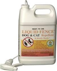 24 99 24 99 Liquid Fence 130 Dog And Cat Repellent 1 Gallon Ready To Use Liquid Fence Dog And Cat Rep Cat Repellant Raised Garden Designs Rodent Repellent