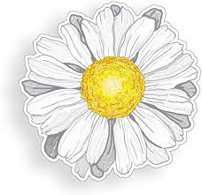 Amazon Com White Daisy Flower Sticker Cup Laptop Car Vinyl Decal Window Bumper Wall Graphic Everything Else