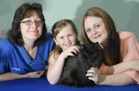 PDSA save cat blinded by car | The Argus