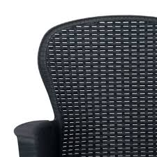 vidaxl garden chairs 2 pcs with cushion