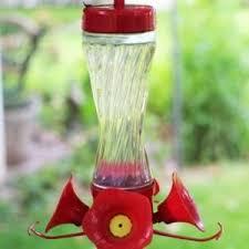 homemade hummingbird food creative