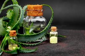 diy aloe vera mouthwash recipe freshen