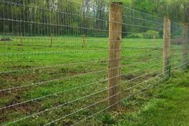 High Tensile Wire Fence Applied For Enclosing Animals