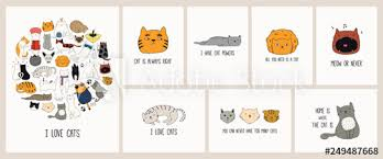 set of cards cute color doodles of different cats funny