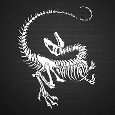 Jurassic Park Raptor Fossil Raptor Skeleton Jurassic Park Clever Girl Raptor Fossil Skeleton Car Decal Jurassic Park Tattoo Fossil Art Jurassic Park