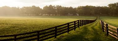 Longview Texas Real Estate - Homes, Farms, Ranches, Land, Auctions