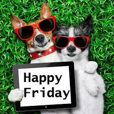 happy friday dogs with images happy