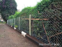 Chain Link Fences Cute Fencing