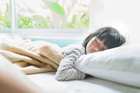 10 Best Toddler Pillows Pillow Cases 2020 Reviews