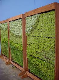 Living Wall Panels By Succulent Gardens Vertical Garden Living Wall Wall Planters Outdoor