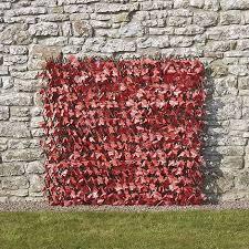 Maple Leaf Expanding Hedge Trellis Thompson Morgan