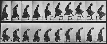 The photos that revolutionized how we understand motion
