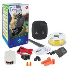 Petsafe In Ground Dog Electric Fence Reviews Wayfair