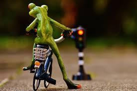"""Résultat de recherche d'images pour """"grenouille velo"""""""