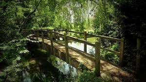 nature, trees, house, grass, plants, wooden bridge, river, England |  1920x1080 Wallpaper - wallhaven.cc