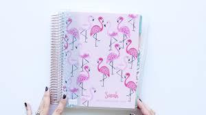 flamingo erin condren er
