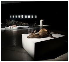 Art Review: Polly Morgan @ All Visual Arts | Londonist