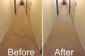 mercial carpet cleaning chicago 0