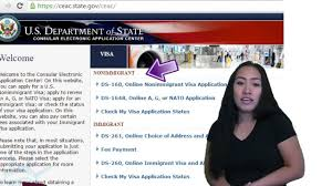 how to check your us visa status