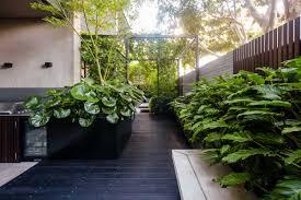 lisa ellis gardens landscape design
