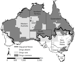 Map Of The Dingo Fence In Australia At A Length Of 5 614 Km 3 488 Mi It Is The Longest Fence In The World 1299x1078 Mapporn
